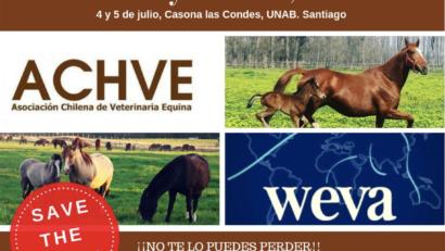 WEVA Blog